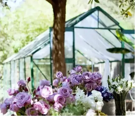 How to decorate your Greenhouse?